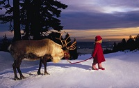 The Peak of Christmas en Grouse Mountain