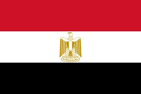 Históricas elecciones en Egipto